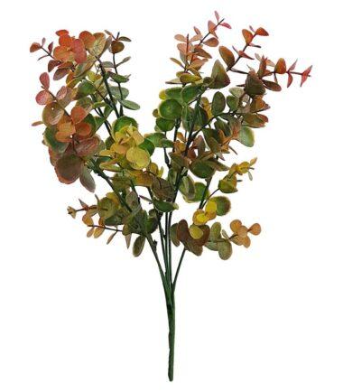 Flor Eucalipto Verde Outono