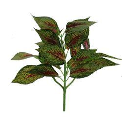 Folhagem Croton Real Toque